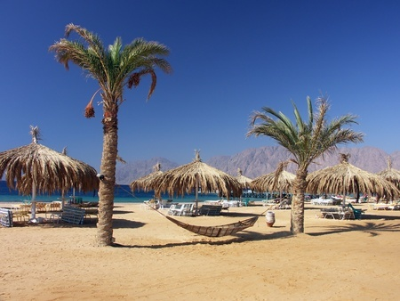 Enjoy the beaches of the Red Sea